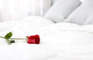 A red Rose on a bed with luxury white bedding for valentine's day