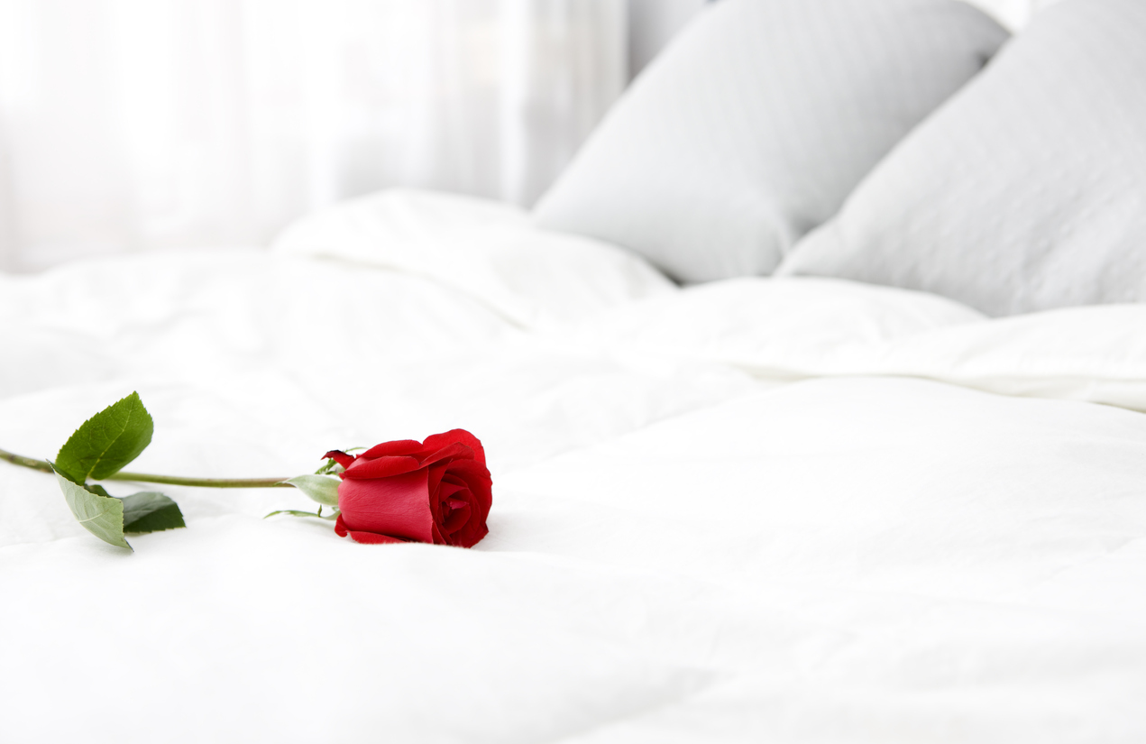 snuggle up for valentine 39 s day sussex beds